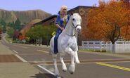 Sim riding horse as a transport