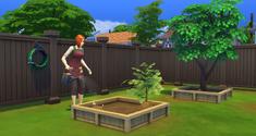Simka w ogrodzie