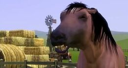 K,NjM4MTIwMTYsNDYyMDQwNjM=,f,943758 The sims 3 horse 2 medium