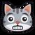 Płochliwy (kot)