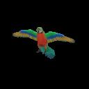 Catalina Macaw Transparent