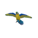 Blue Gold Macaw Transparent
