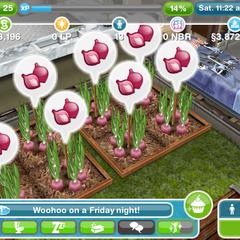 Mnóstwo nowych roślin do zasiania, za które czeka nagroda