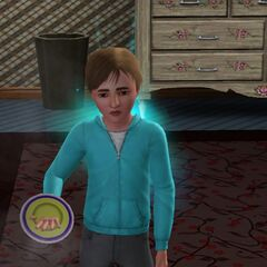 Błąd z talerzem w The Sims 3