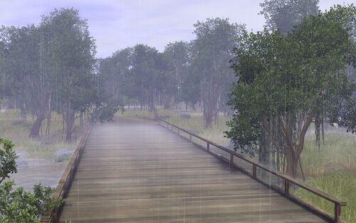 DeszczwTwinbrook