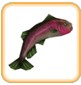 Rainbow Trout (freeplay)