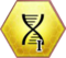 Пересборка ДНК 2
