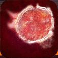 Scenario nipah virus