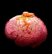 Brain 02 off@2x