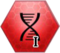 Пересборка ДНК 1