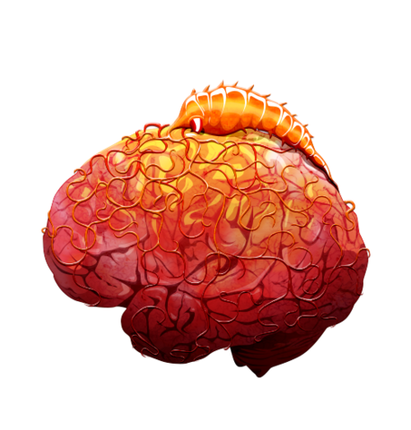 File:Brain 05 off@2x.png