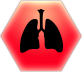Lungs@2x.png