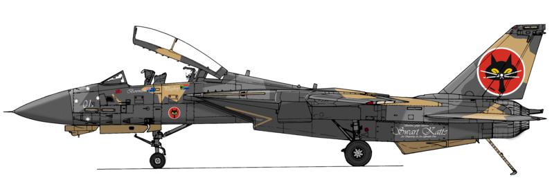 F14reduxaftergh