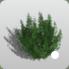 Green Leafy Bush icon