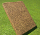 Thatch Roof Slope