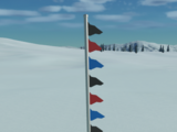 Flagpole With Flags