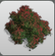 Floral Bush icon