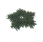 Planet Coaster - Holly Wreath - Star Small icon