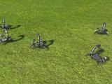 Small Scorpion Group