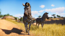 Planet Zoo screenshot 3
