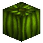 0143 0091 melon