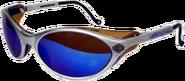 Glar's Sunglasses