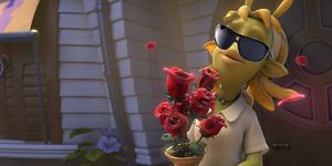 SunglassesNeera