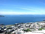 View-of-Seattle-Harbor-from-Space-Needle