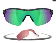 Sunglasses Eckle