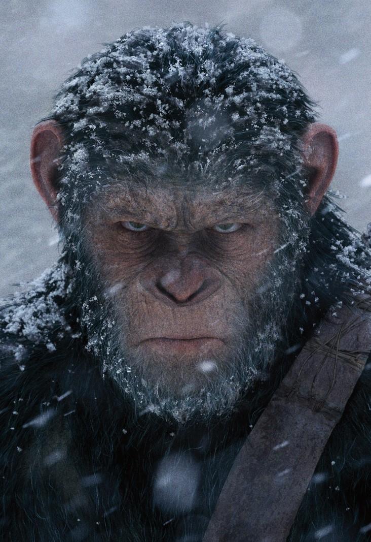Caesar Planet Der Affen