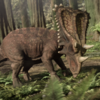 ChasmosaurusPortrait