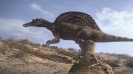 1x1 SarcosuchusScaresOffSpinosaurus