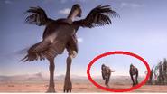 Alectrosaurs chased by Gigantoraptor