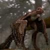 SinornithosaurusPortrait