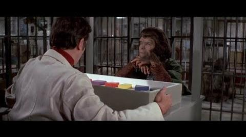 Escape from the Planet of the Apes (1971) Intelligence test part 3 7