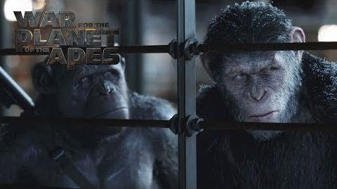 "War for the Planet of the Apes ""I Am Like Koba"" Deleted Scene 20th Century FOX"