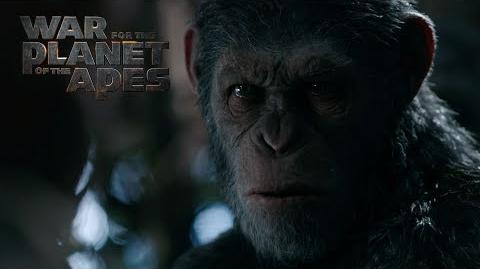 War for the Planet of the Apes Legacy 20th Century FOX