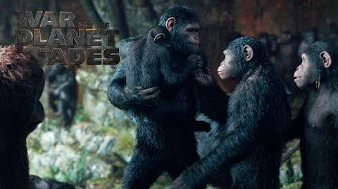 """War for the Planet of the Apes """"To Protect My Family"""" TV Commercial 20th Century FOX"""