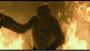 Koba jumps through fire