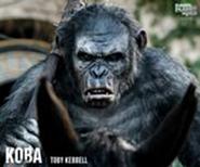 180px-Koba