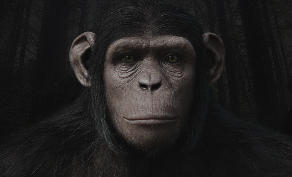 Image - Cornelia.png | Planet of the Apes Wiki | FANDOM ...