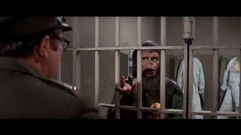 Escape from the Planet of the Apes (1971) Apes given oranges part 1 2