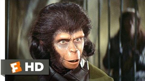 Planet of the Apes (2 5) Movie CLIP - Human See, Human Do (1968) HD