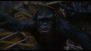 Koba turns to see Caesar lunge at him