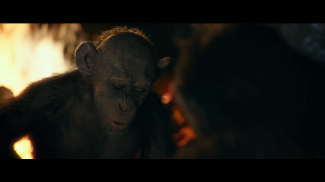 File:WPOTA Bad Ape believes the humans will wipe out all the apes.png
