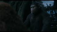 Caesar ponders on Maurice's claim on humanity's extinction or survival