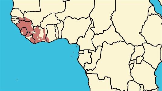 File:Westafrica.jpg