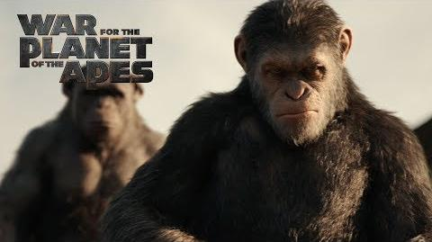 "War for the Planet of the Apes ""One Of The Best Films"" TV Commercial 20th Century FOX"