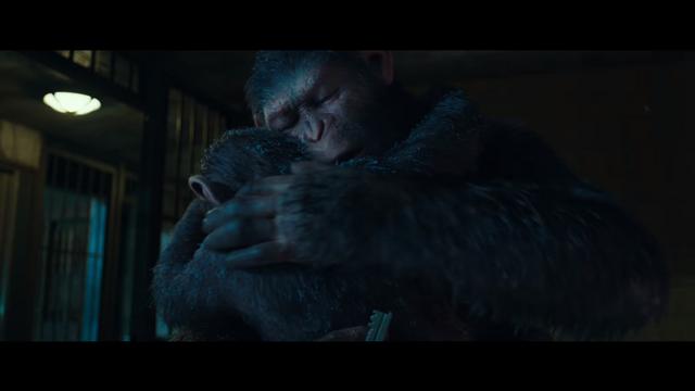 File:WPOTA Caesar hugging Milo.png