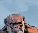 """Beardface"""